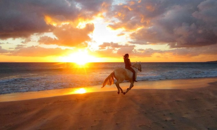 Horseback riding tours while staying in Makanas Cabinas